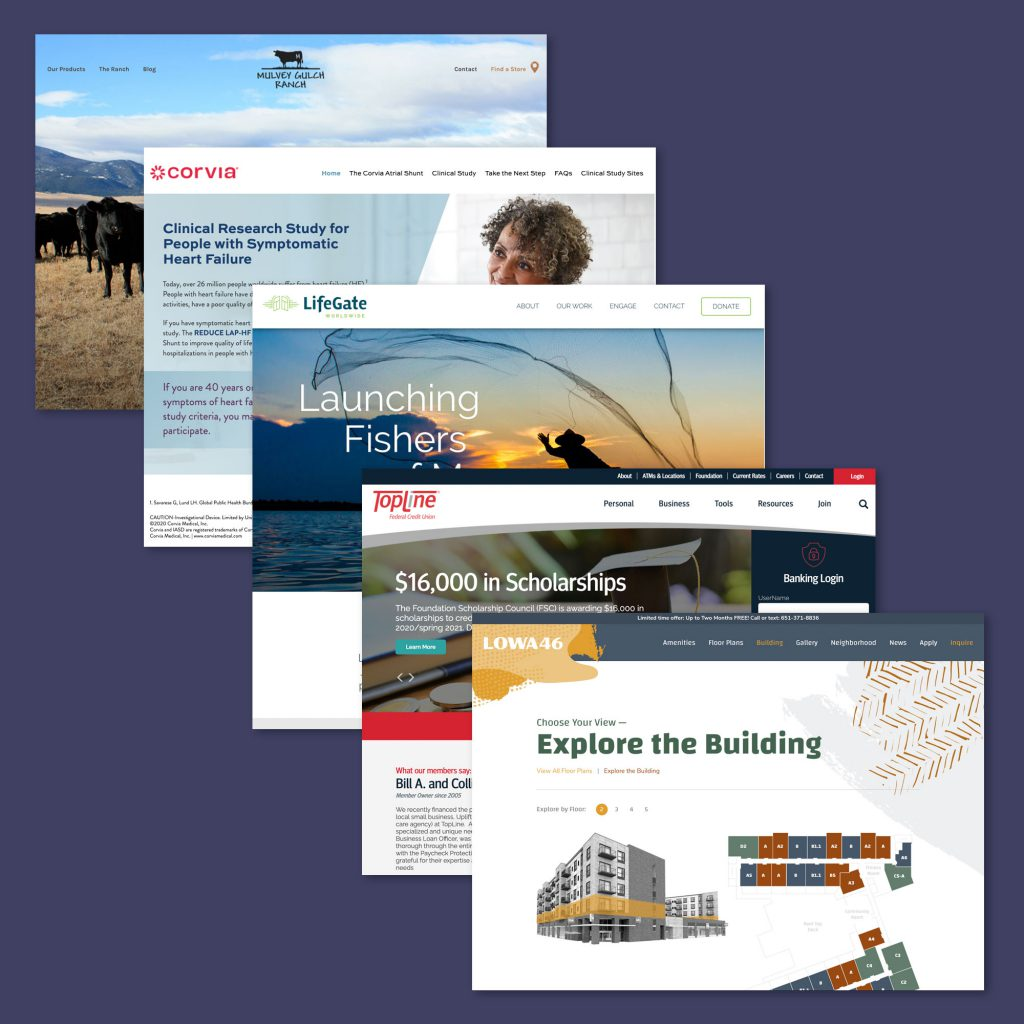 Web Development collage